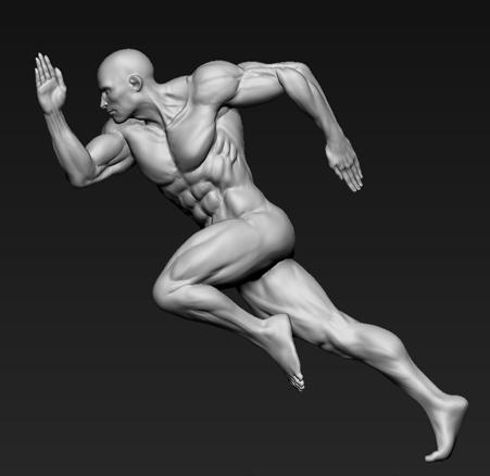 anatómico 3D