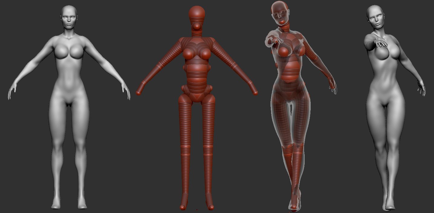 3D rigging ZBrush